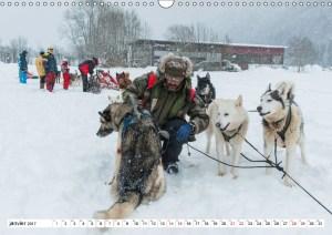 Musher et ses chiens de traîneau