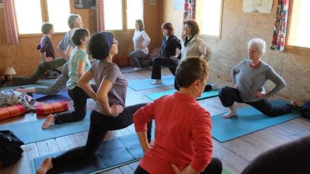hatha-yoga-indien-clement-leurent