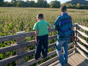 How meditation is like a corn maze, on the Hilltown Families Blog