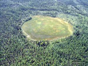 A photograph showing the site of the Tunguska meteor impact nowadays, in the Siberian region of Russia.