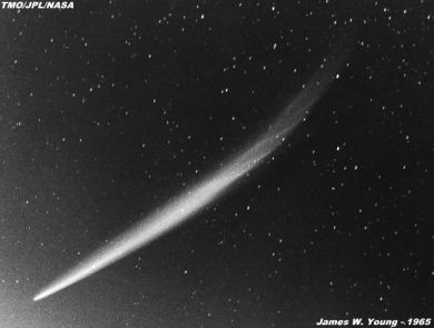A photograph of comet Ikeya-Seki 1965 by James W. Young. Image: TMO/JPL/NASA