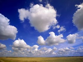 A photograph of some particularly fluffy cumulus clouds.