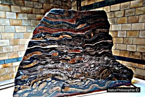 Two-and-a-half tonne banded iron formation at Hintze Hall, Natural History Museum, London. Artwork: NaturPhilosophie