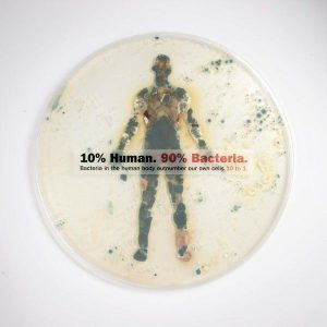 An infographics about the biological make-up of human beings: 10% human cells and 90% bacteria.