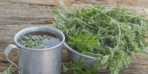 A photograph showing a cup of Artemisia herbal tea. Source The Nutrition Watchdog