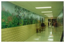 Children's Educational Murals