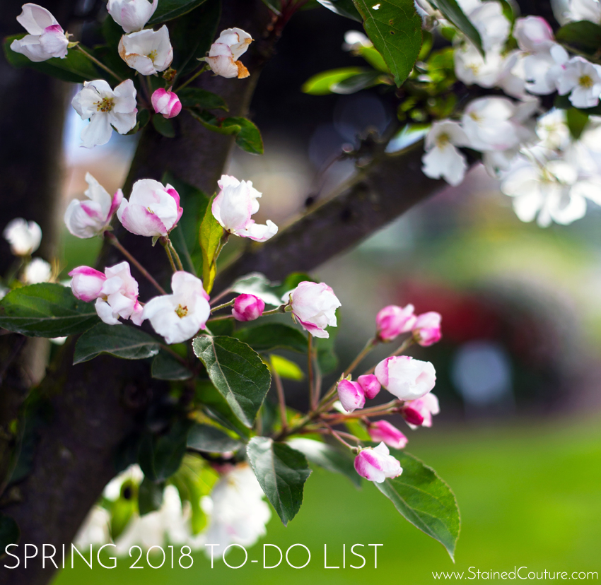 Spring To-Do List 2018