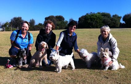 Doggy Walking group on Trey Bit Reserve, Sandringham
