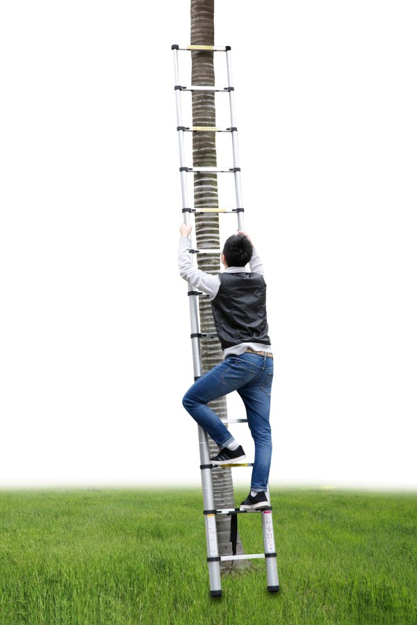 telescopic ladders for sale