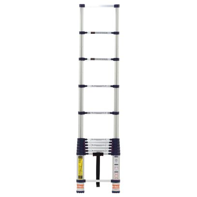 telescoping ladder sears