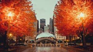 chicago fall