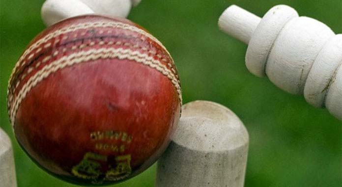 How To Bet On Cricket In The Online Platform?