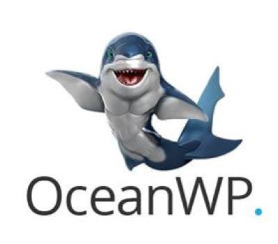 OceanWP - Core Web Vitals
