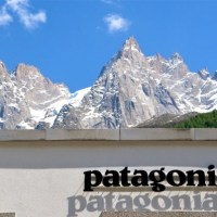 Patagonia and B-Corps
