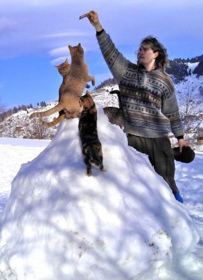 Jon tormenting the cats on their new igloo