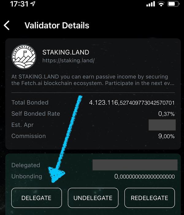 Wallet address in Fetch Mainnet