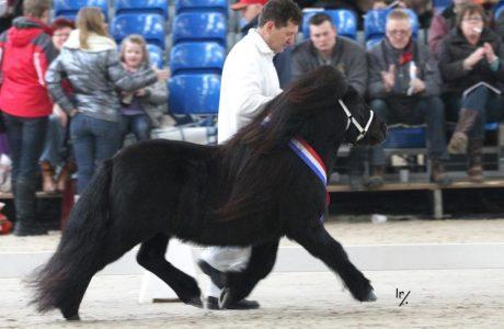 Calypso v.d. Buitenweg