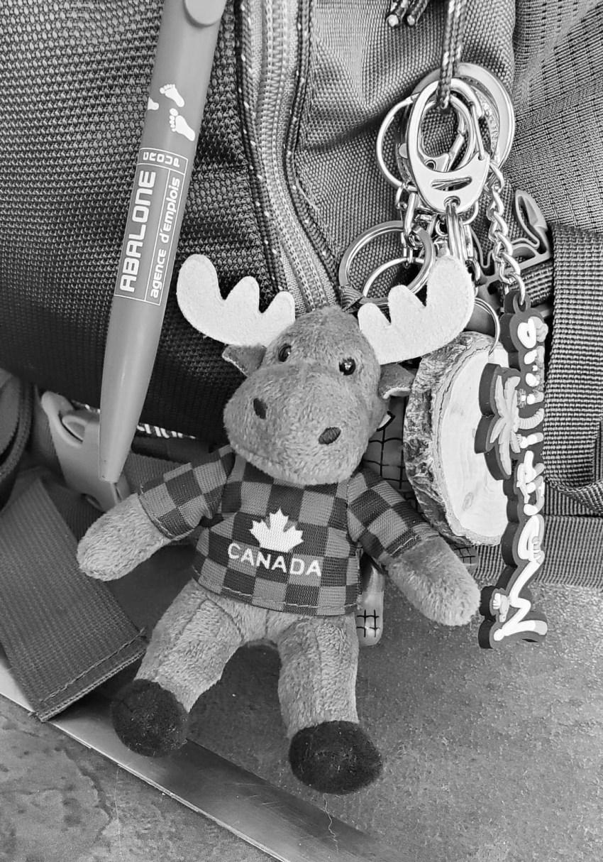 porte clés de voyage canada ile maurice