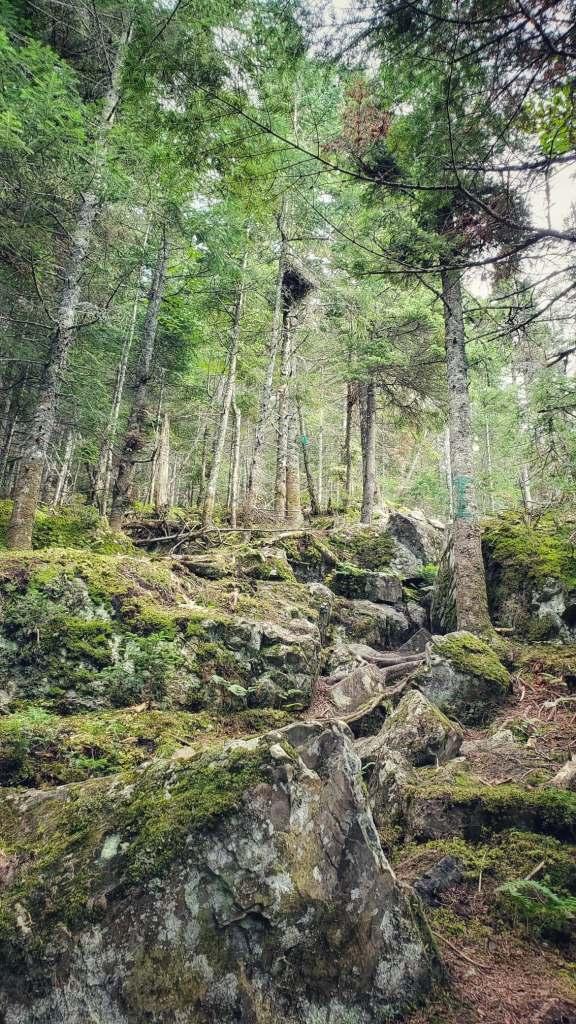 randonnée-massif-quebec
