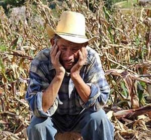 Crisi-agricola-immagine-simbolica-300x279