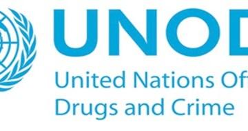 L'ONU contro la famiglia patriarcale e sessista nel mondo