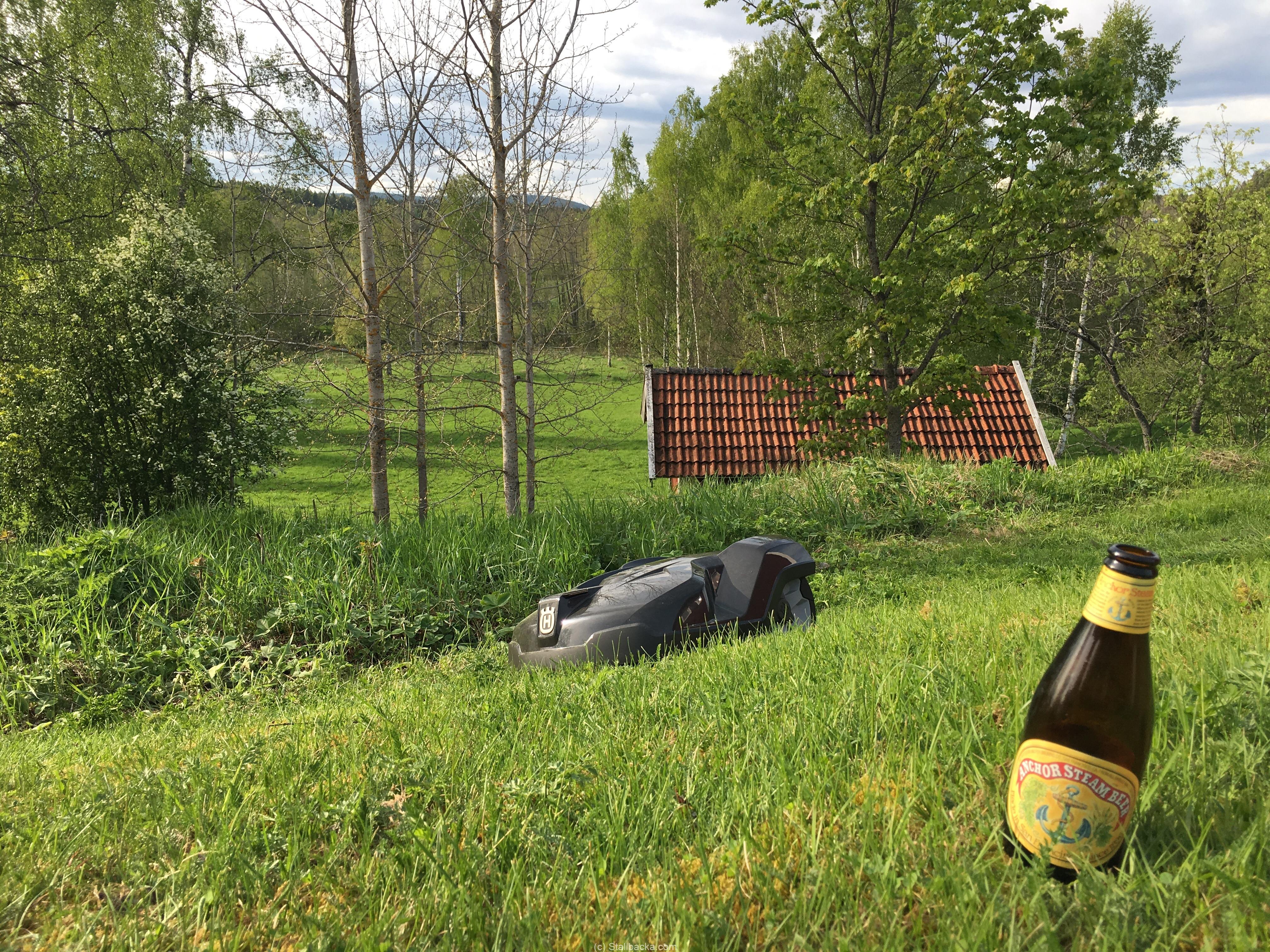 Njuter av säsongens första gräsklippning :)