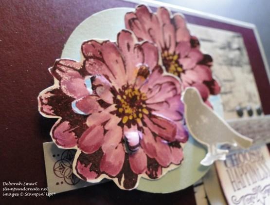 PCCCS144 flower close up
