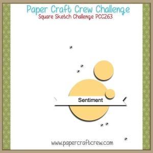 PCC263 Sketch Challenge