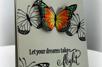 Take a fly with a new butterfly