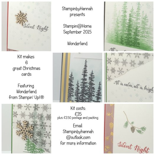 Stampin' Up! Uk at home class Wonderland vellum cardmaking workshop