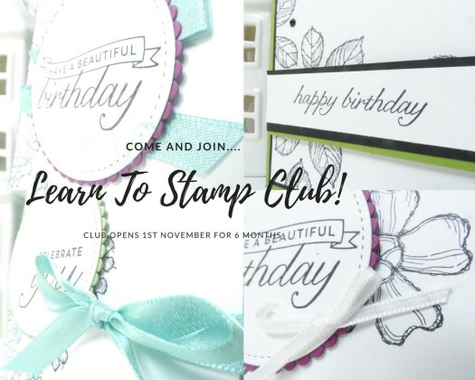 Stampin' Up! Class Beginners Guide to Stamping Class with StampinByHannah