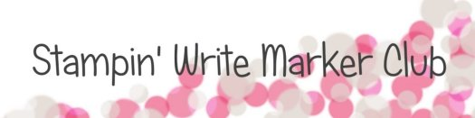 Stampin' Write Marker Club with StampinByHannah