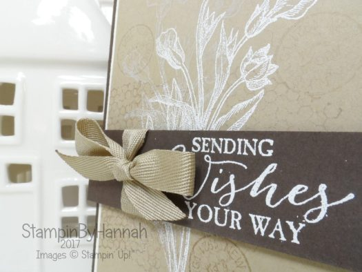 Get Well Soon card using Butterfly Basics from Stampin' Up!