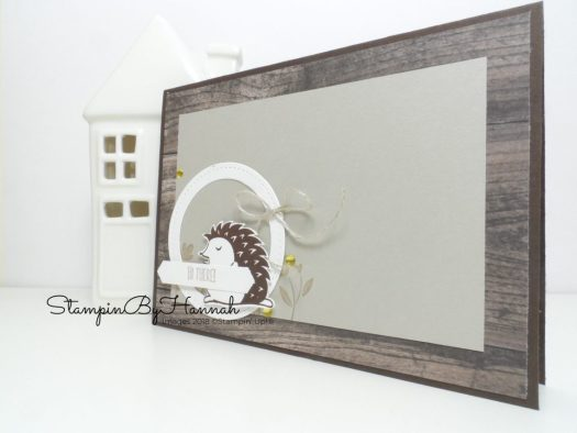 3 fun card ideas using Hedgehugs from Stampin' Up!
