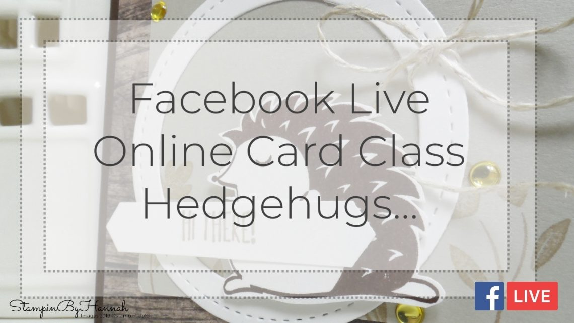 StampinByHannah Stampin' Up! Facebook Live Online Card Class March 2018 3 cards with Hedgehugs