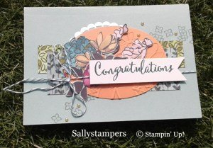 Stampin' Up! Share What You Love Card by Sally Stampers