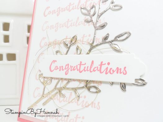 How to do the Stamparatus from Stampin' Up! using the Petal Palette Stamp set
