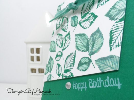 Manly Happy Birthday Card using Rooted in Nature from Stampin' Up!