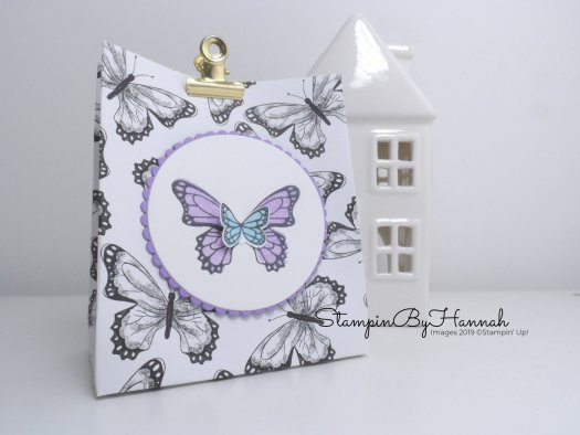 Botanical Butterfly Designer Series paper Pinch Top Bag Video Tutorial using Butterfly Gala from Stampin' Up! with StampinByHannah