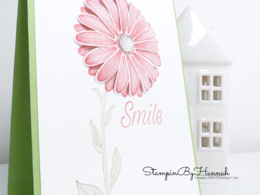 Smile with Daisy Lane from Stampin' Up! with StampinByHannah