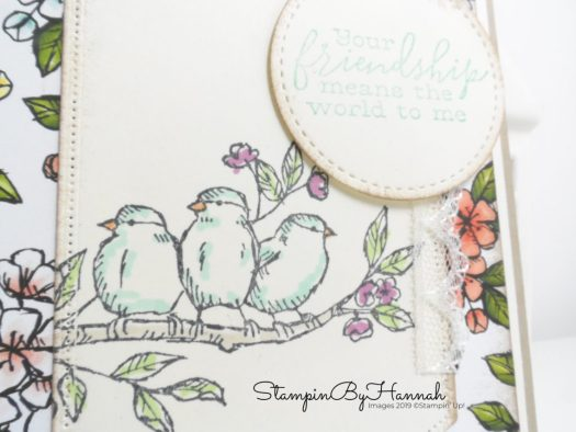 Shabby Chic friend card using Free as a Bird from Stampin' Up! with StampinByHannah