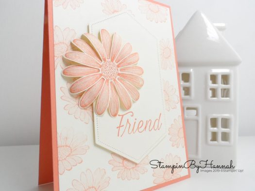 Grapefruit Grove Daisy Lane Friend Card using Stampin' Up! products with StampinByHannah