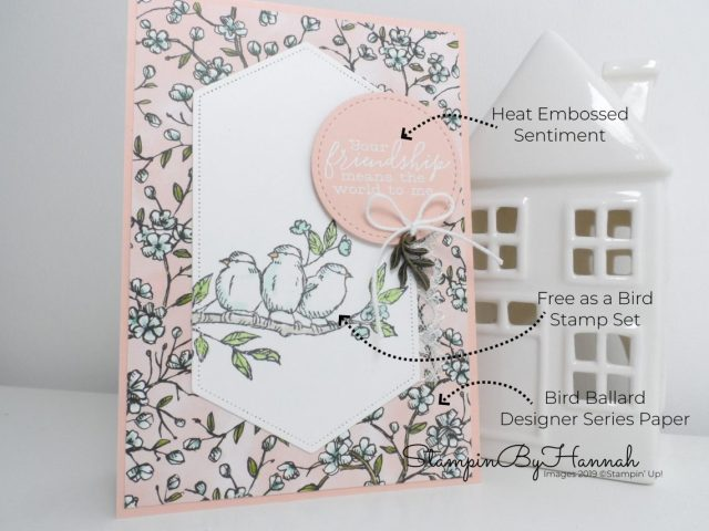 How to make a pretty friendship card using Free as a Bird from Stampin' Up! with StampinByHannah