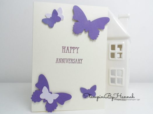 Simple Punched Butterfly Card using Stampin' Up! Products with StampinByHannah's husband!