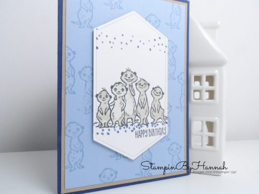The Gangs All Meer Birthday Card using Stampin' Up! Sale-a-bration products with StampinByHannah