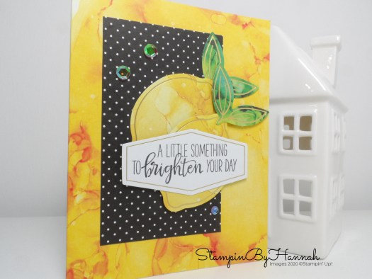 Stampin' Up! Paper Pumpkin Box of Sunshine craft kit