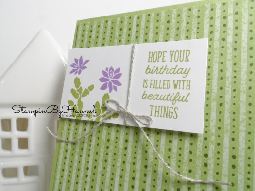 Handstamped Birthday card using Flowering Cactus from Stampin' Up! with StampinByHannah