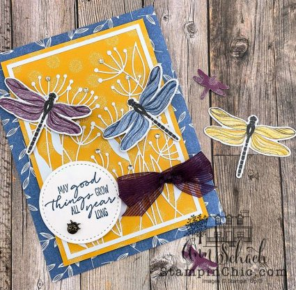 dragonfly all occasion card