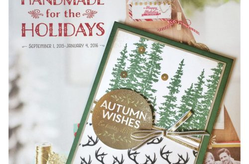A Fall Wonderland card at StampinFool.com