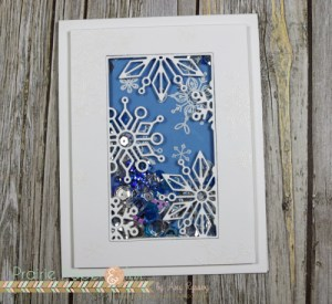 Project: Snowflake Shaker Card